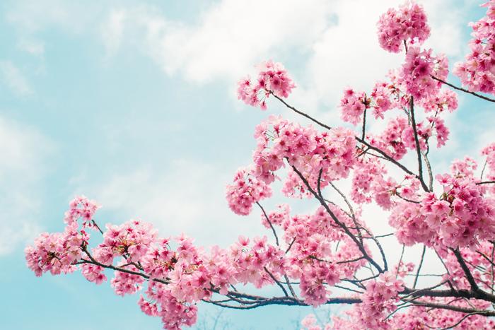夏からのUVケアじゃ遅い!「春」からしっかり紫外線ケアを
